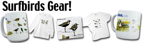 Surfbirds Goodies