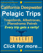 Searcher Natural History Tours - click here